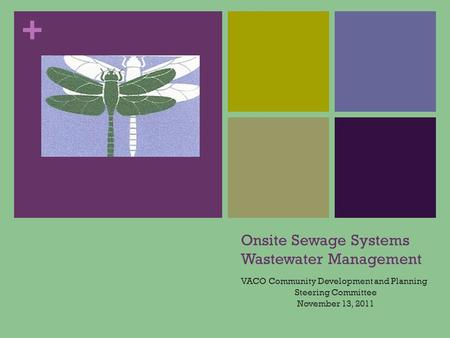 + Onsite Sewage Systems Wastewater Management VACO Community Development and Planning Steering Committee November 13, 2011.