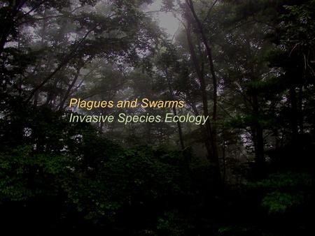 Plagues and Swarms Invasive Species Ecology.