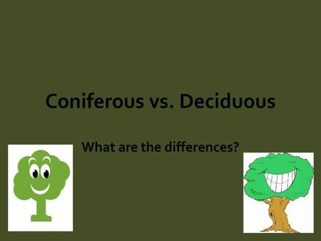 Coniferous vs. Deciduous What are the differences?