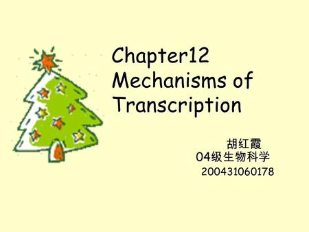 Chapter12 Mechanisms of Transcription 胡红霞 04 级生物科学 胡红霞 04 级生物科学 200431060178 200431060178.