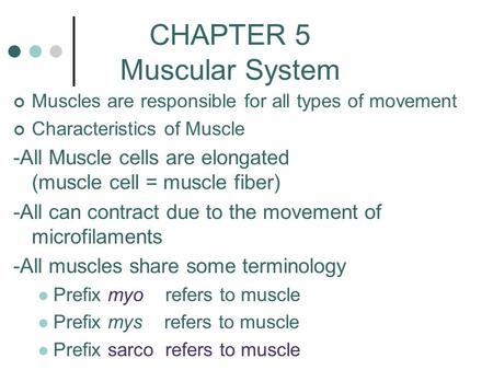 CHAPTER 5 Muscular System Muscles are responsible for all types of movement Characteristics of Muscle -All Muscle cells are elongated (muscle cell = muscle.