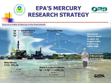 EPA'S MERCURY RESEARCH STRATEGY. MERCURY RESEARCH – STRATEGIC PLANNING Research efforts guided by EPA's Mercury Research Strategy published in 2000 Strategy.