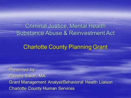 Criminal Justice, Mental Health Substance Abuse & Reinvestment Act Charlotte County Planning Grant Presented by: Pamela Baker, MA Grant Management Analyst/Behavioral.
