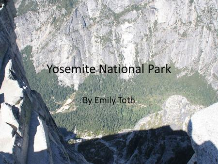 Yosemite National Park By Emily Toth. Biome At higher elevations, fewer wildlife species tend to be found due to the lower complexity of the forest Above.