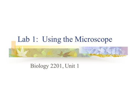 Lab 1: Using the Microscope