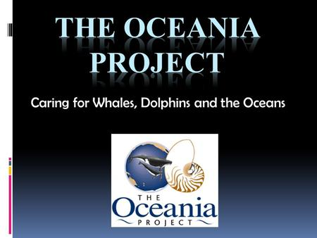 "Caring for Whales, Dolphins and the Oceans. What is the Oceania Project? ""Two decades of dedication to independent research"" The Oceania Project was established."