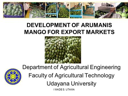 I MADE S. UTAMA DEVELOPMENT OF ARUMANIS MANGO FOR EXPORT MARKETS Department of Agricultural Engineering Faculty of Agricultural Technology Udayana University.