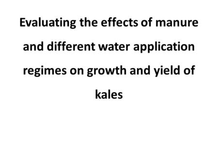 Evaluating the effects of manure and different water application regimes on growth and yield of kales.