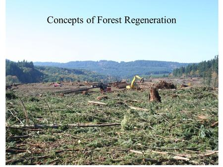 Concepts of Forest Regeneration. Regeneration vs. Reproduction Regeneration: the act of renewing tree cover by establishing young trees naturally or artificially.