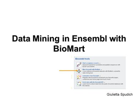 Data Mining in Ensembl with BioMart Giulietta Spudich.