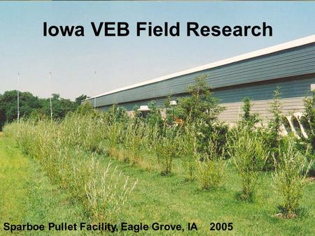 Sparboe Pullet Facility, Eagle Grove, IA 2005 Iowa VEB Field Research.