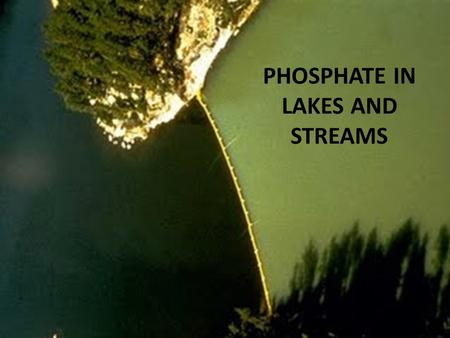 PHOSPHATE IN LAKES AND STREAMS. PHOSPHORUS IN SURFACE WATER PARTICULATE PHOSPHORUS In living things In minerals or adsorbed to clays, etc. Adsorbed to.