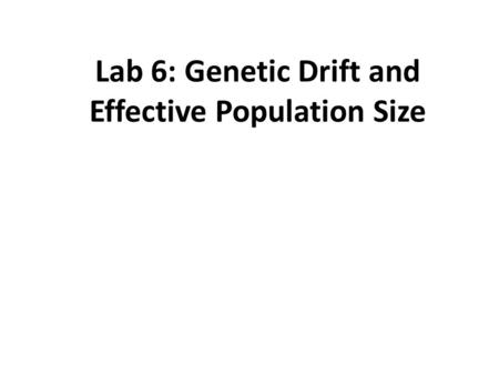 Lab 6: Genetic Drift and Effective Population Size