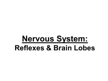 "Nervous System: Reflexes & Brain Lobes. (1) Reflex Arc Reflex = Involuntary Movements to Stimuli –Always happens same way –Always triggered same way –""Arc"""
