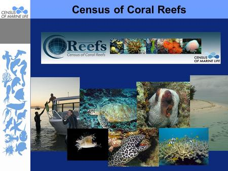 Census of Coral Reefs Feel free to include sample imagery and animations where appropriate. Be sure to credit source where appropriate or necessary. Additional.