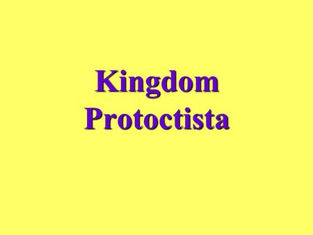 Kingdom Protoctista. Includes Protozoa and Algae Some are microscopic, but some can be observed by the unaided eye Some are unicellular organisms, but.
