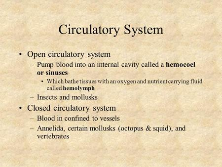 Circulatory System Open circulatory system –Pump blood into an internal cavity called a hemocoel or sinuses Which bathe tissues with an oxygen and nutrient.
