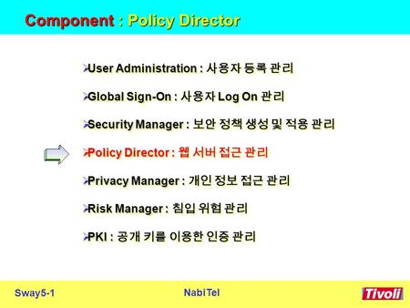 Sway5-1 NabiTel Component : Policy Director  User Administration : 사용자 등록 관리  Global Sign-On : 사용자 Log On 관리  Security Manager : 보안 정책 생성 및 적용 관리 