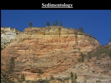 Sedimentology. WHY STUDY SEDIMENTARY ROCKS? 1)Cover over 70% of Earth's Land Surface These are the rocks you see most often. 2) Economically Important!!