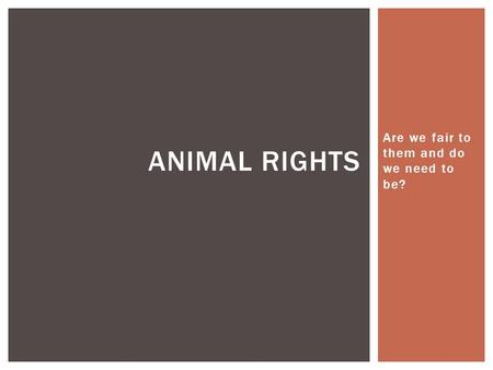 Are we fair to them and do we need to be? ANIMAL RIGHTS.