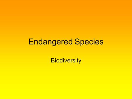 Endangered Species Biodiversity.