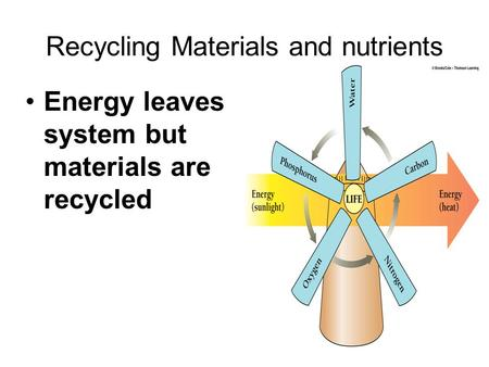 Recycling Materials and nutrients Energy leaves system but materials are recycled.