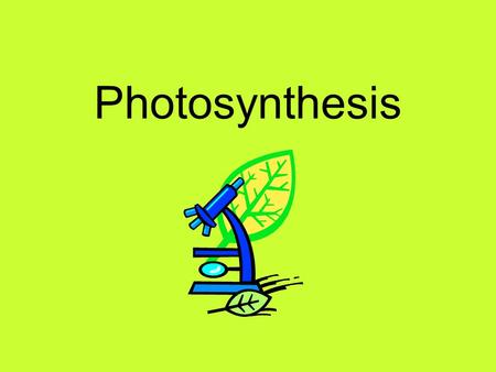 Photosynthesis. Two main groups of living things: Plants Animals In science we call them…. Autotrophs Heterotrophs.