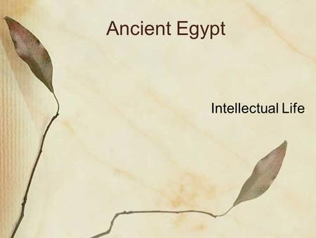 Ancient Egypt Intellectual Life. Egyptian Creation Story Believed that the earth was created when a hill emerged from the waters of chaos. This made sense.
