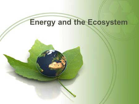 Energy and the Ecosystem. Questions for Today: How does energy flow in Ecosystems? What happens to usable Energy as it travels through a food chain or.