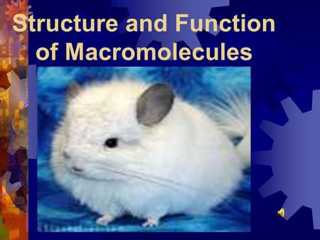 recognition of important macromolecules Macromolecules of life  macromolecules are large molecules that are  transport proteins are important for carrying compounds or chemicals that are important.
