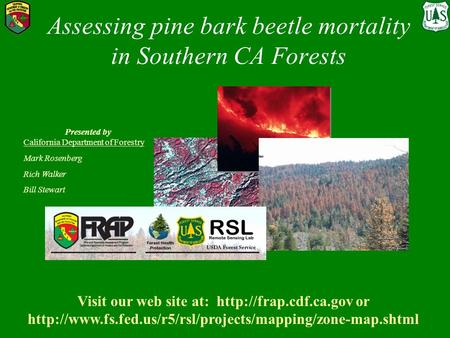 Assessing pine bark beetle mortality in Southern CA Forests Presented by California Department of Forestry Mark Rosenberg Rich Walker Bill Stewart Visit.