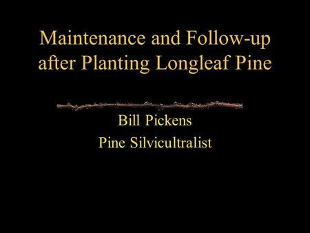 Maintenance and Follow-up after Planting Longleaf Pine Bill Pickens Pine Silvicultralist.
