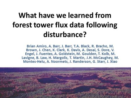 What have we learned from forest tower flux data following disturbance? Brian Amiro, A. Barr, J. Barr, T.A. Black, R. Bracho, M. Brown, J. Chen, K. Clark,