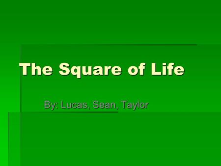 The Square of Life By: Lucas, Sean, Taylor. Swasey Central School  Ant  Beetle  Flying Bugs  Spiders  Worm  Frog Eggs  Inch Worm  Black Beetle.