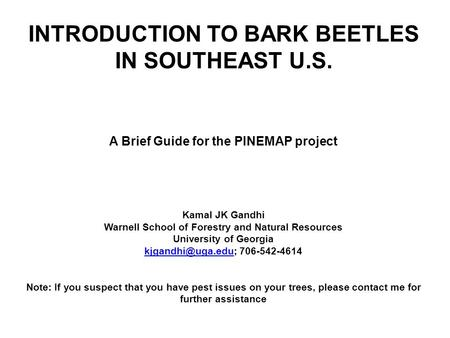 INTRODUCTION TO BARK BEETLES IN SOUTHEAST U.S. A Brief Guide for the PINEMAP project Kamal JK Gandhi Warnell School of Forestry and Natural Resources University.