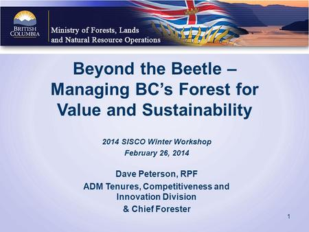 Beyond the Beetle – Managing BC's Forest for Value and Sustainability 2014 SISCO Winter Workshop February 26, 2014 Dave Peterson, RPF ADM Tenures, Competitiveness.