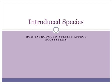 HOW INTRODUCED SPECIES AFFECT ECOSYSTEMS Introduced Species.