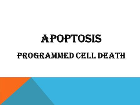 Apoptosis Programmed cell death. OBJECTIVES DEFINITION, PHYSIOLOGIC AND PATHOLOGIC CONDITIONS. DESCRIBE THE MORPHOLOGY AND DISCUSS THE POSSIBLE MECHANISMS.