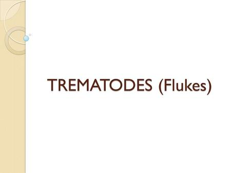 TREMATODES (Flukes). Common features: They are flat, provided with suckers as organ of attachment. Trematodes are usually leaf shaped, and commonly named.