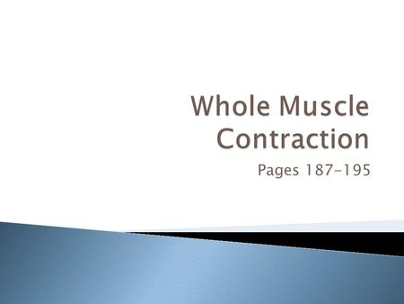 "Pages 187-195.  Muscle fiber contraction is ""all or none"" ◦ There is no ""in-between"" contraction  Not all fibers may be stimulated at one time  Different."