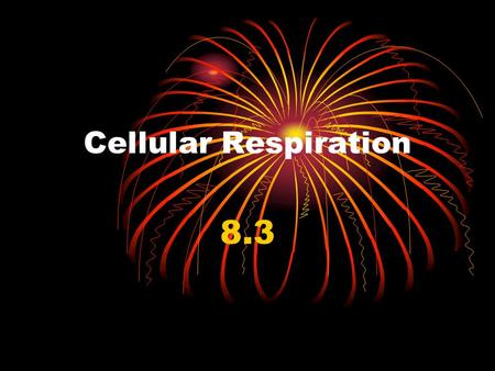 Cellular Respiration 8.3. I. Cellular Respiration A.Cellular Respiration- The process that breaks down food molecules (glucose) into ATP 1. Takes place.