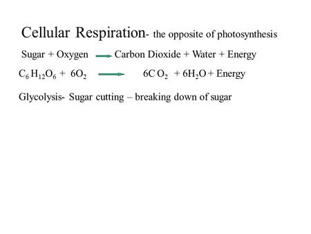 Cellular Respiration - the opposite of photosynthesis Sugar + Oxygen Carbon Dioxide + Water + Energy C 6 H 12 O 6 + 6O 2 6C O 2 + 6H 2 O + Energy Glycolysis-