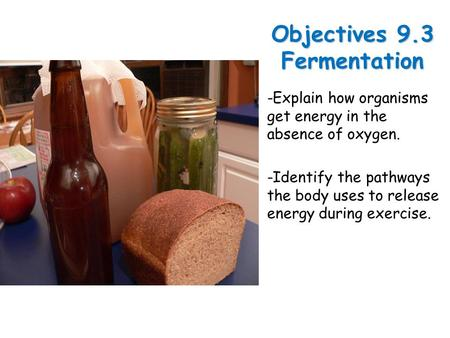 Lesson Overview Lesson OverviewFermentation Objectives 9.3 Fermentation -Explain how organisms get energy in the absence of oxygen. -Identify the pathways.