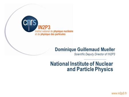 Dominique Guillemaud Mueller Scientific Deputy Director of IN2P3 National Institute of Nuclear and Particle Physics www.in2p3.fr.