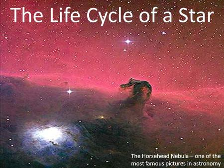 The Life Cycle of a Star The Horsehead Nebula – one of the most famous pictures in astronomy.