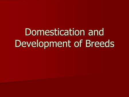 Domestication and Development of Breeds. How have these animals adapted to various special environmental or genetic influences?