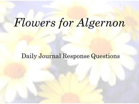 Daily Journal Response Questions