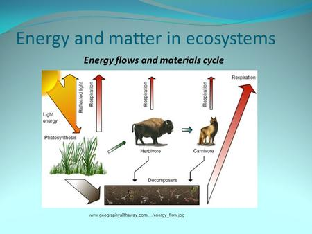 Energy and matter in ecosystems www.geographyalltheway.com/.../energy_flow.jpg Energy flows and materials cycle.