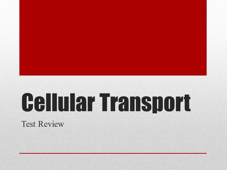 Cellular Transport Test Review. What does this picture represent??