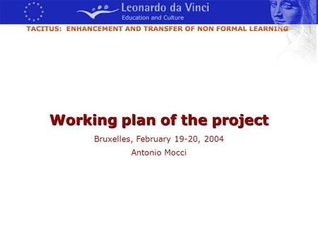 Bruxelles, 19-20 Febbraio 2004 Antonio Mocci - 2004 Working plan of the project Bruxelles, February 19-20, 2004 Antonio Mocci.